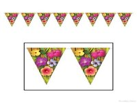 Other Bunting