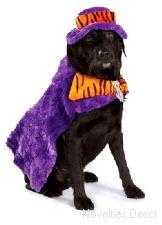 Doggie Fancy Dress Contest