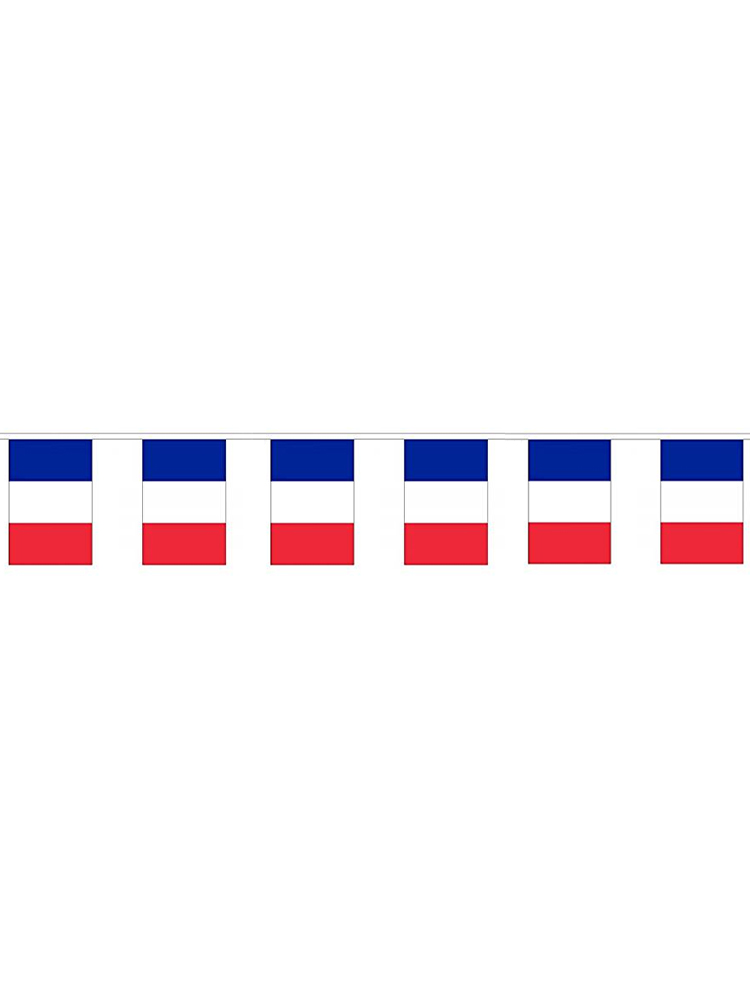 France Flag Bunting Rectangular Flags 6m long 20flags Polyester