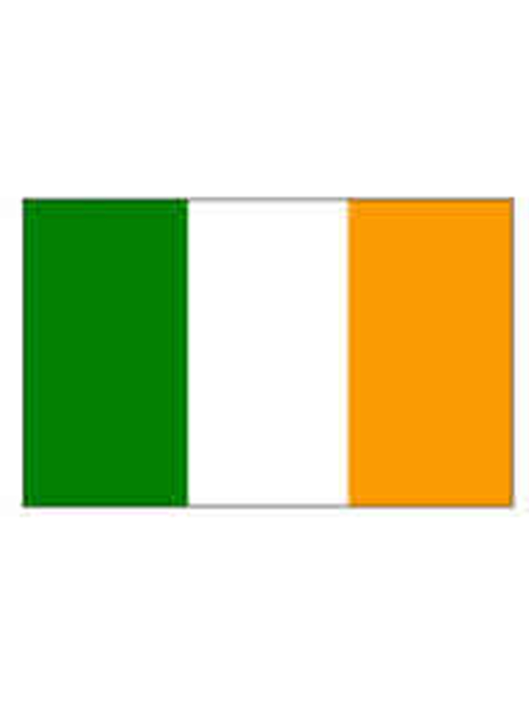 Ireland Rep Flag 5ft x 3ft   With Eyelets For Hanging