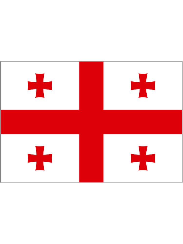 Georgia medium hand flag (20 Flags)