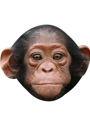 Baby Monkey (Child Size) Mask