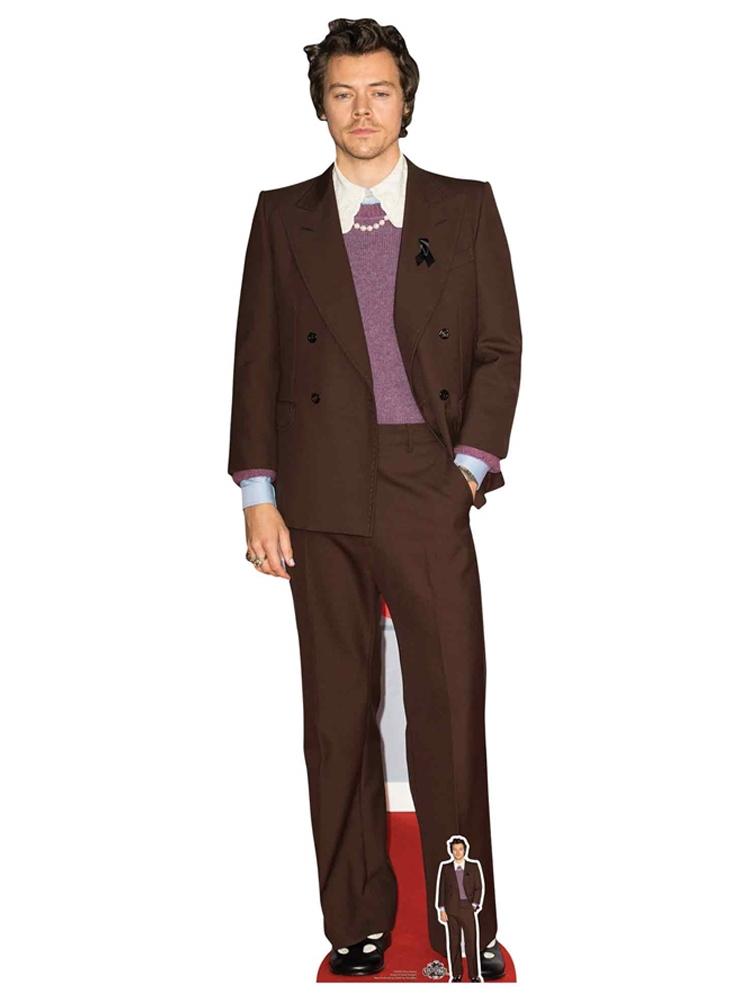 Harry Styles Cardboard Cutout with Free Mini Standee