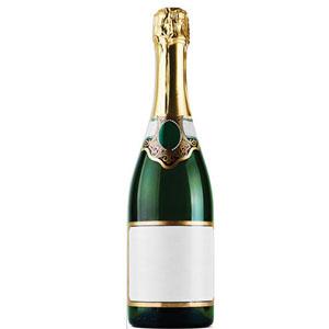 Champagne Bottle Cardboard Cutout