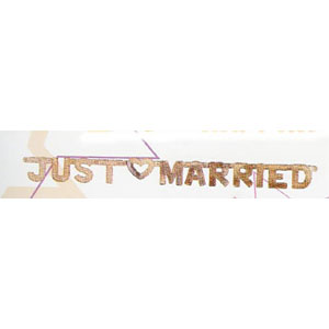 Just Married Banner Silver
