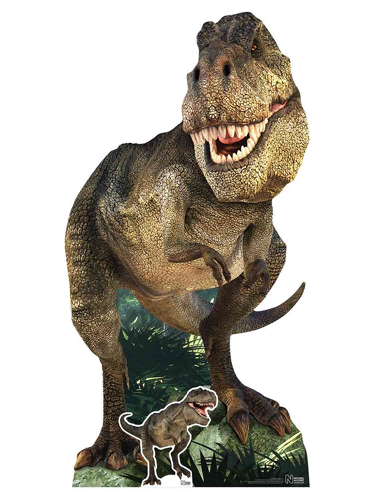 Tyrannosaurus Rex Natural History Museum with Mini Tabletop Dinosaur Cutout