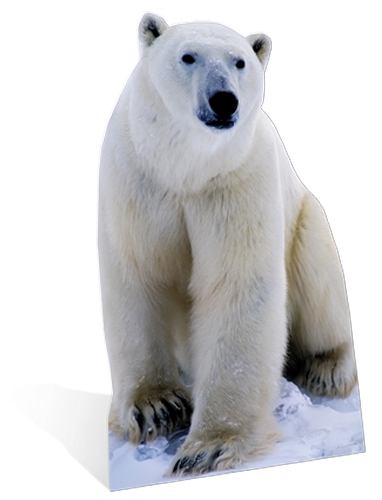 Polar Bear - Cardboard Cutout