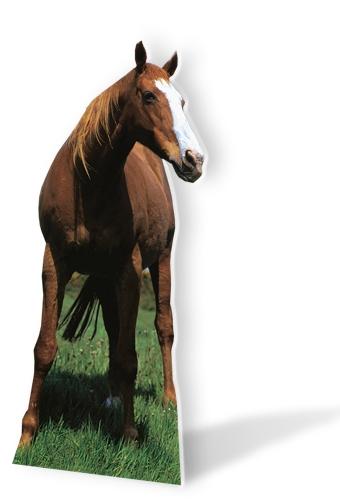 Mustang - Horse Cardboard Cutouts