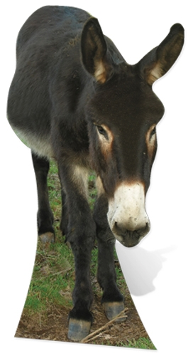 Donkey - Cardboard Cutout