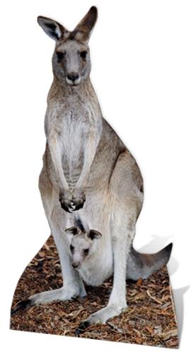 Kangaroo - Cardboard Cutout