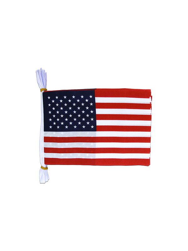 USA Flag Bunting Rectangular Flags