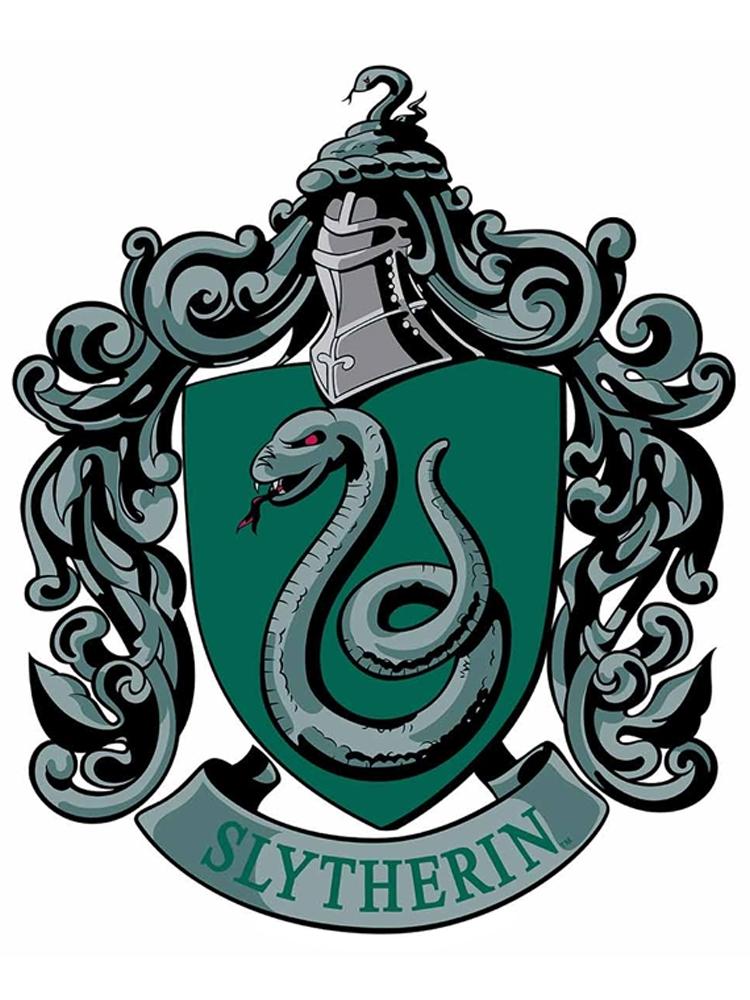 Slytherin Emblem Wall Cut Out HARRY POTTER WIZARDING WORLD