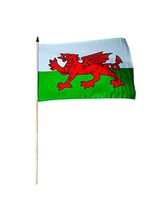 Wales Polyester Hand Held Flag 24 x 15 cm