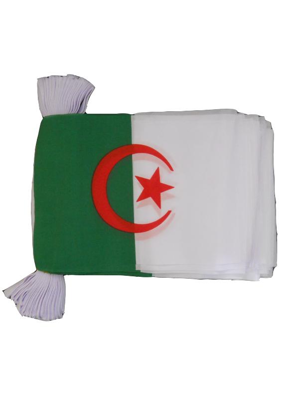 Algeria Bunting 6m 20 Flag