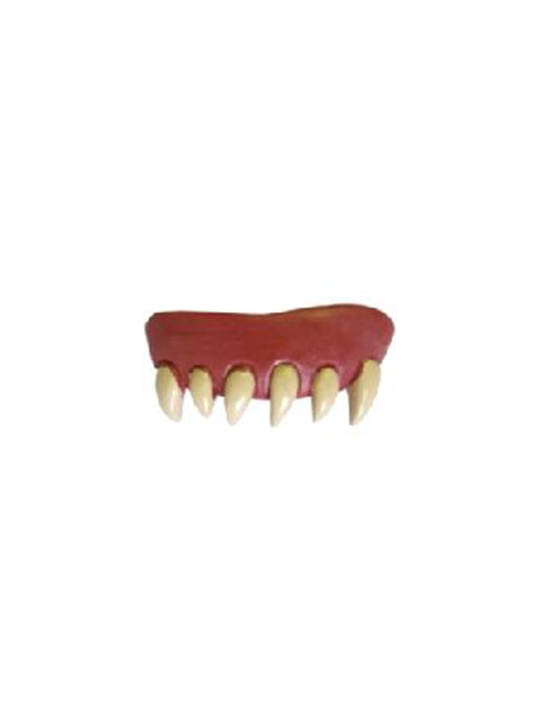 Teeth Animal Original