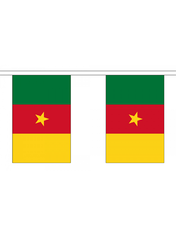Cameroon Bunting 6m 20 Flag