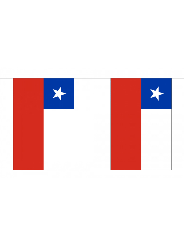 Chile Bunting 6m 20 Flag