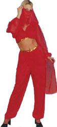 Harem Girl Fancy Dress Costume (12345)