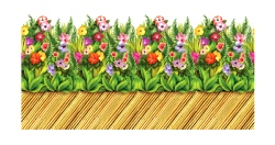 Tropical Flower And Bamboo Walkway Border