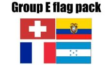 GROUP E Football World Cup 2014 Flag Pack (5ft x 3ft)