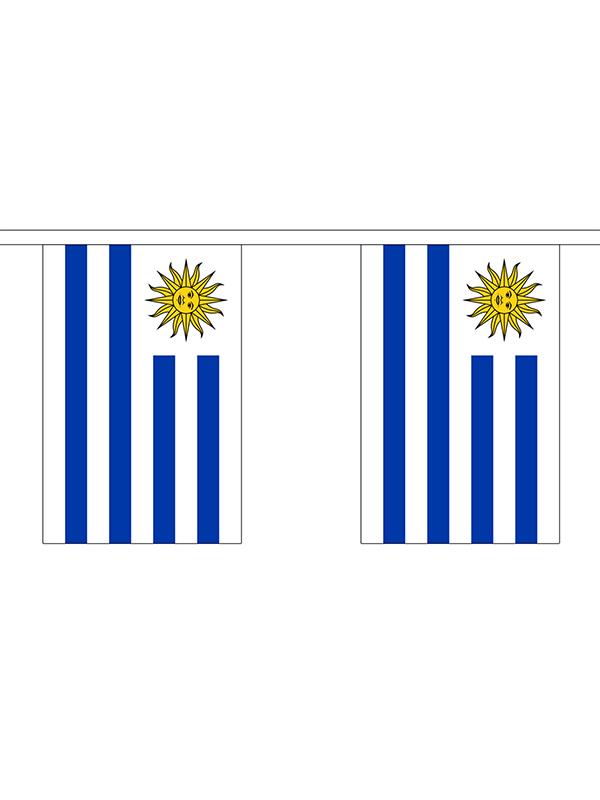 Uraguay Bunting 6m 20 Flag