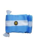 Argentina Bunting 6m 20 Flag
