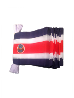 Costa Rica Bunting 6m 20 Flag