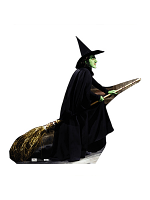 Wicked Witch - Broomstick Cardboard Cutout