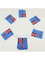 6m 20 flag Fiji Bunting
