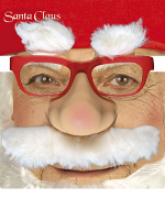 Santa Glasses W/Nose Tash Eyebrows