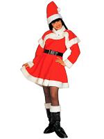 Lady Santa Deluxe Costume