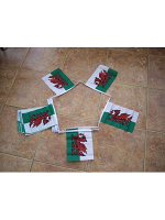 6m 20 flag Welsh Dragon Bunting (Wales)