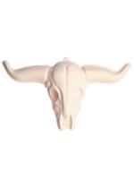 3D Buffalo Skull PVC