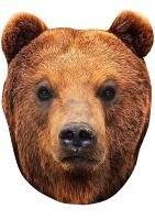 Bear Mask