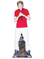 Niall Horan Life-size Cardboard Cutout (Pop Star)