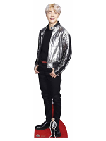 Park Ji-min (Jimin) Silver Jacket BANGTAN BOYS