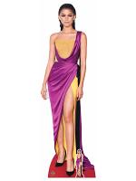 Zendaya Dancer Singer Actress