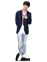 Bangtan Boys Red Tie Kim_Seok_Jin (Star Mini) KPOP
