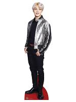 Bangtan Boy Silver Jacket Park_Ji_Min (Star Mini)