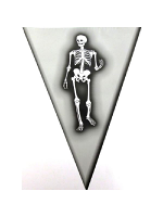 Halloween Pennant Bunting - Skeleton Design