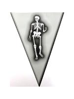 Halloween Pennant Bunting - Skeleton Design