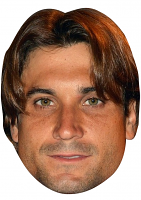 David Ferrer Mask