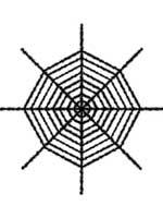 Giant Shimmering Spider Web  - Black