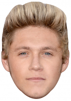 Niall Horan Mask