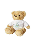 Personalised Blue Church Message Teddy Bear