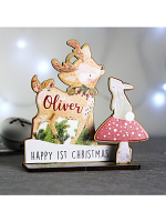 Personalised Make Your Own Reindeer 3D Decoration Kit