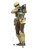 Shoretrooper (Star Wars Rogue One)
