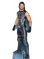 Seth Rollins World Wrestling Entertainment WWE