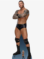WWE Randy Orton World Wrestling Entertainment