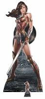 Wonder Woman (Movie Graphic Artwork) Cutout